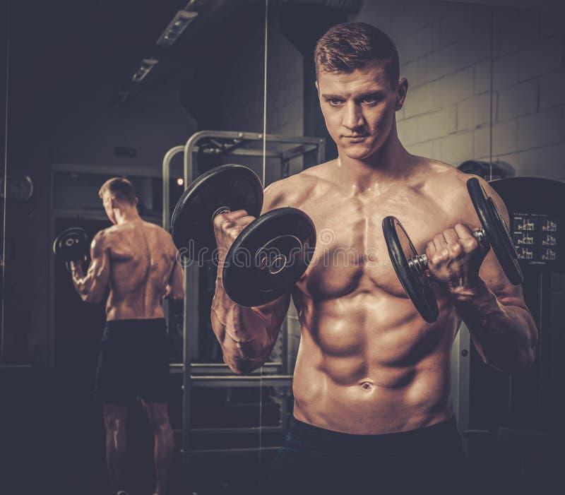 Homem atlético que faz exercícios com pesos no estúdio do Gym fotos de stock