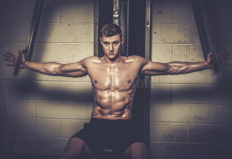 Homem atlético que faz exercícios em instrumentos do treinamento no estúdio do gym fotos de stock royalty free
