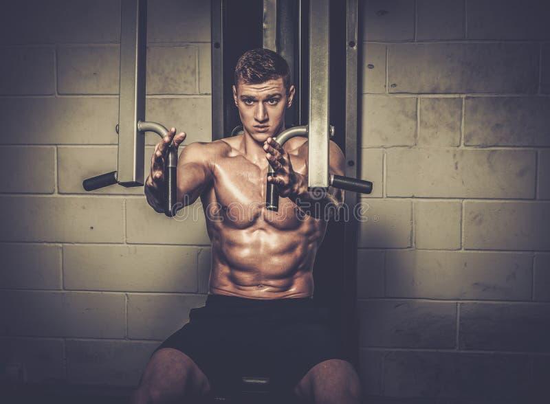 Homem atlético que faz exercícios em instrumentos do treinamento no estúdio do gym imagem de stock