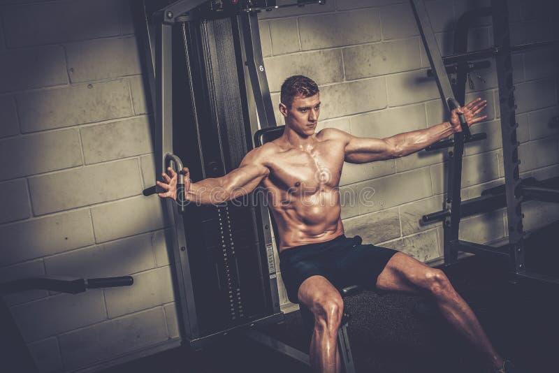Homem atlético que faz exercícios em instrumentos do treinamento no estúdio do gym imagens de stock royalty free