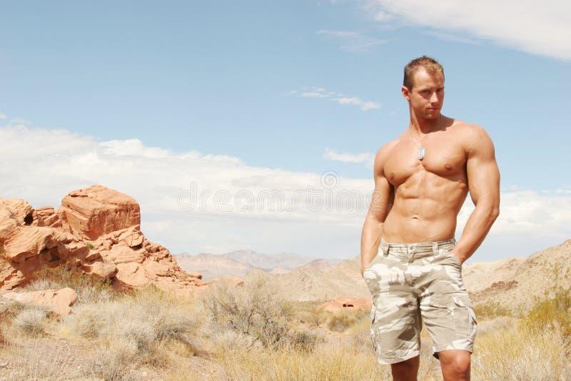 Homem atlético 'sexy' com Abs da tábua de lavar fotografia de stock