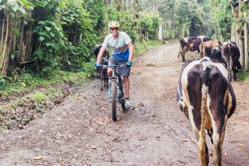 Homem, bicicleta de montada nas montanhas da Guatemala fotografia de stock royalty free