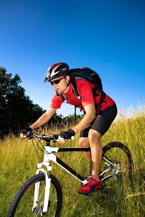 Homem Biking fotos de stock royalty free