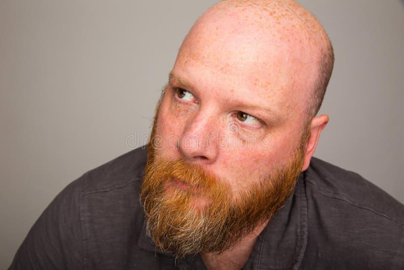 Homem calvo com a barba que olha acima imagem de stock