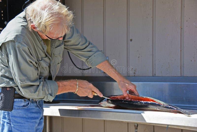 Homem caucasiano que limpa um salmão fotos de stock royalty free