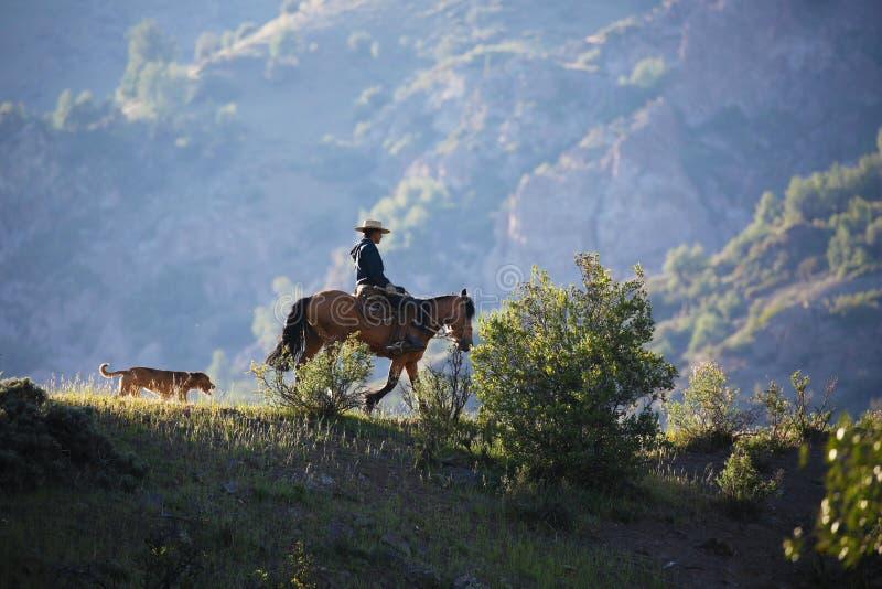 Homem a cavalo e seu cão no chileno Andes fotos de stock