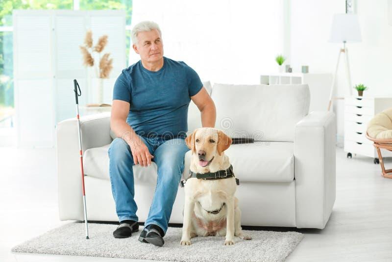 Homem cego com o cão de guia que senta-se no sofá imagens de stock royalty free