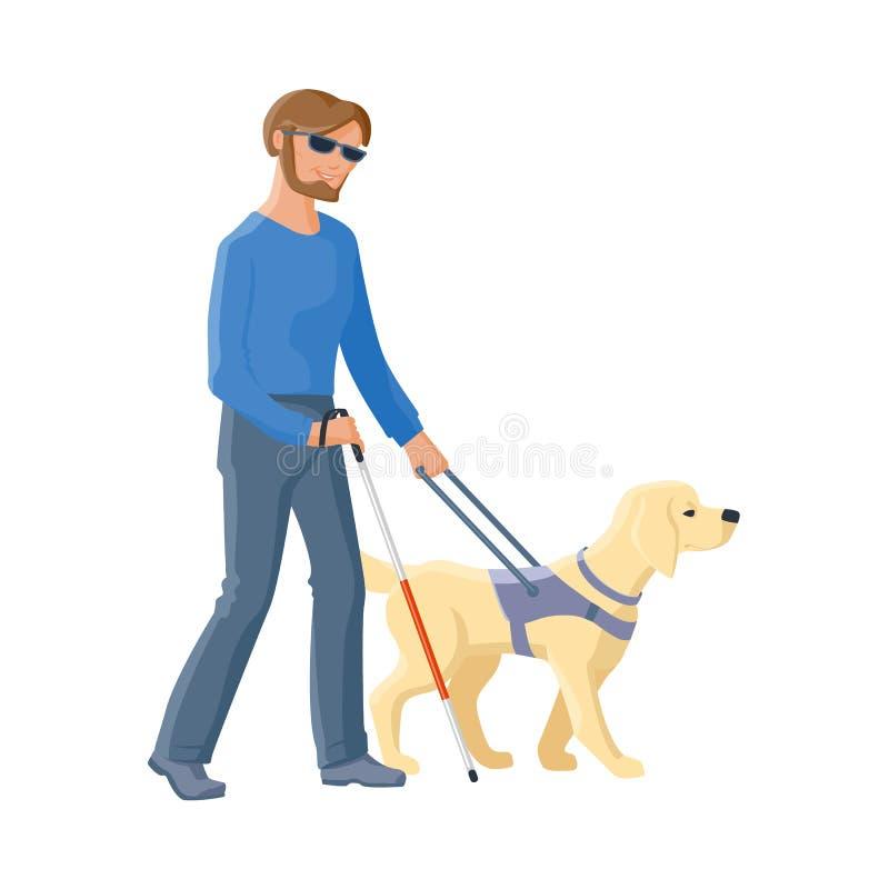 Homem cego que anda com o cão do bastão e de guia ilustração stock