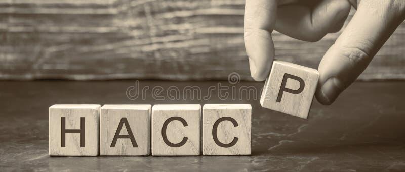 Homem coloca blocos de madeira com a palavra HACCP Análise de riscos e pontos críticos de controlo Regras de gestão da qualidade  foto de stock royalty free