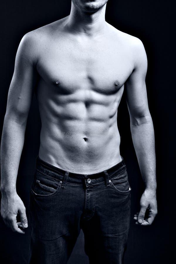 Homem com Abs rasgado muscular 'sexy' foto de stock
