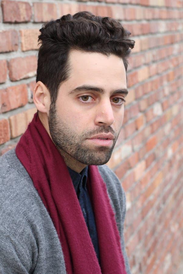 Homem com barba, forma masculina - imagem conservada em estoque imagens de stock