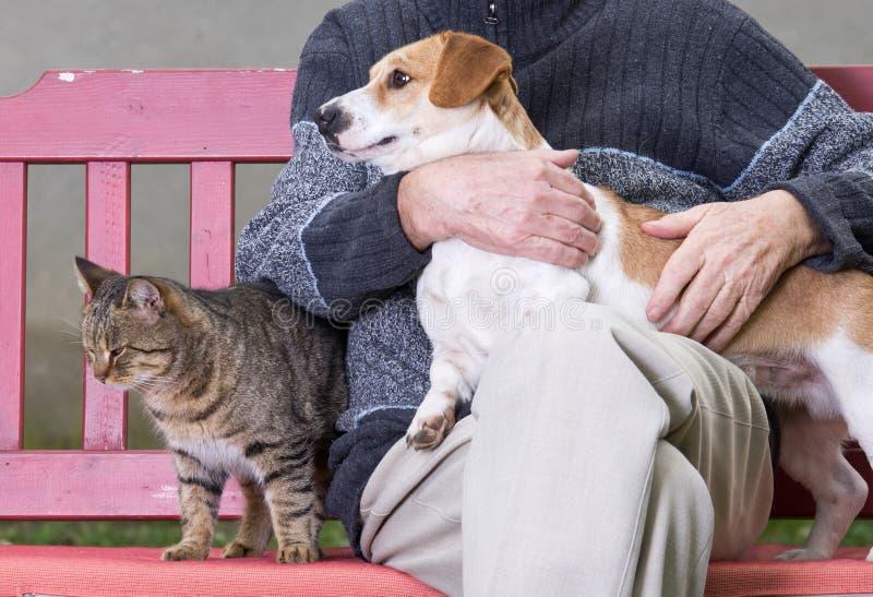 Homem com cão e gato imagem de stock royalty free