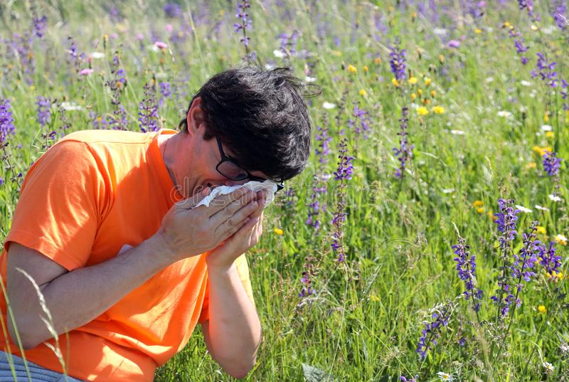 Homem com espirros da camisa devido à alergia imagens de stock
