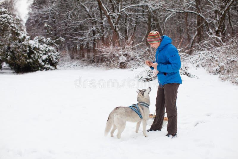 Homem com o cão ronco no inverno fotos de stock