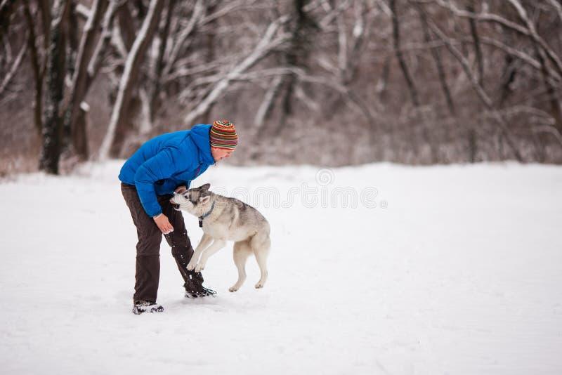 Homem com o cão ronco no parque nevado do inverno foto de stock royalty free