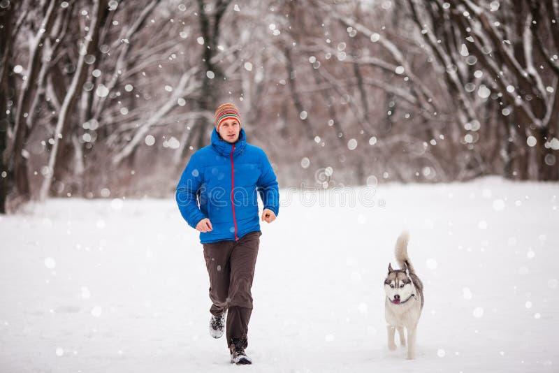 Homem com o cão ronco no parque nevado do inverno imagem de stock