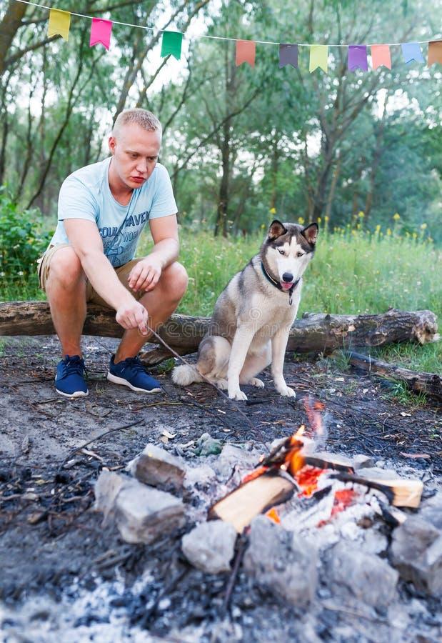 Homem com o cão ronco que prepara a fogueira no treveler do moderno da floresta do verão fora na madeira fotografia de stock royalty free
