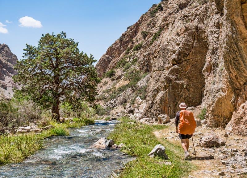 Homem com a trouxa que caminha ao longo do rio na montanha de Fann, Tajikista fotografia de stock royalty free