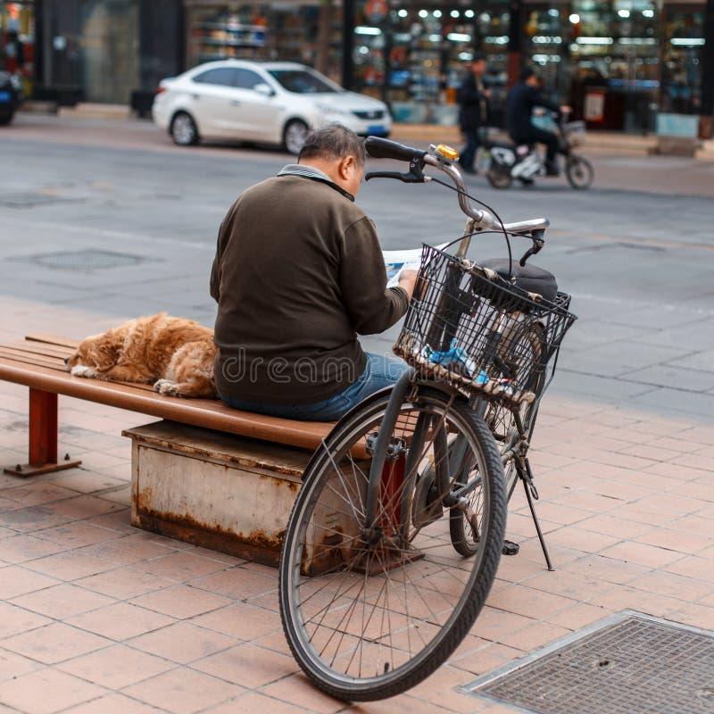 Homem com um cão que senta-se em um banco e que lê um jornal imagens de stock royalty free