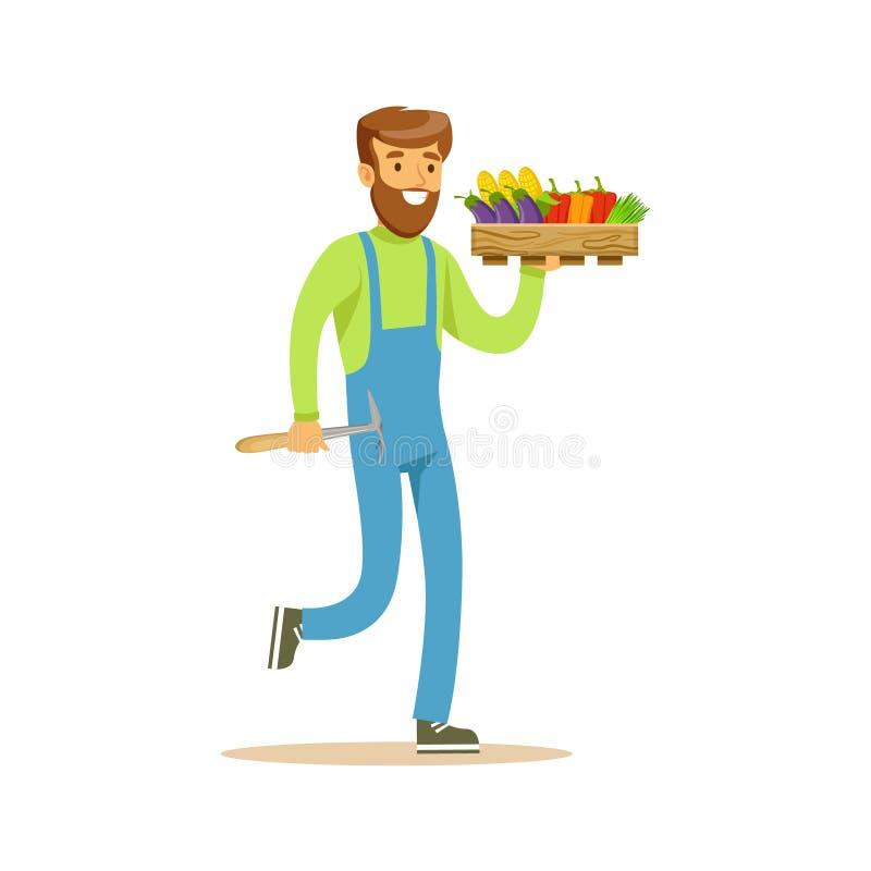 Homem com vegetais de Chopper And Crate Of Fresh, exploração agrícola de Working At The do fazendeiro e venda no mercado de produ ilustração do vetor