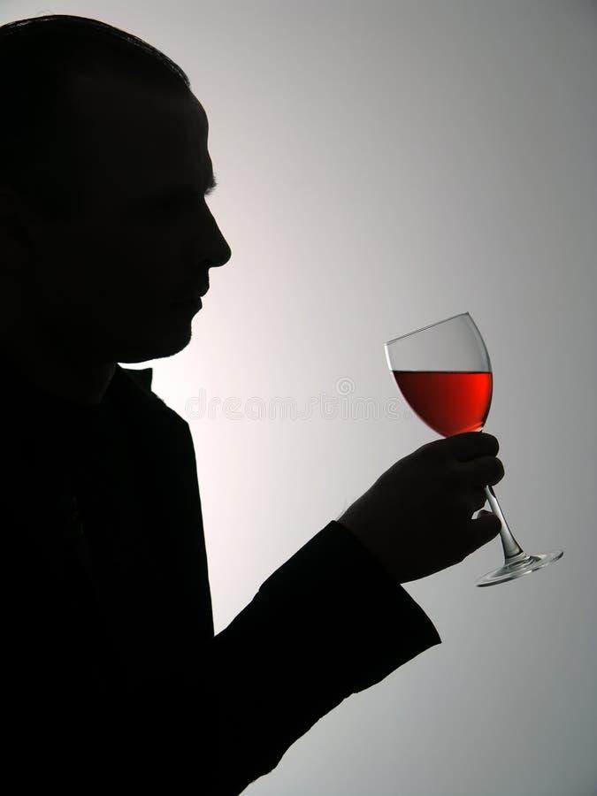Homem com vidro de vinho fotos de stock