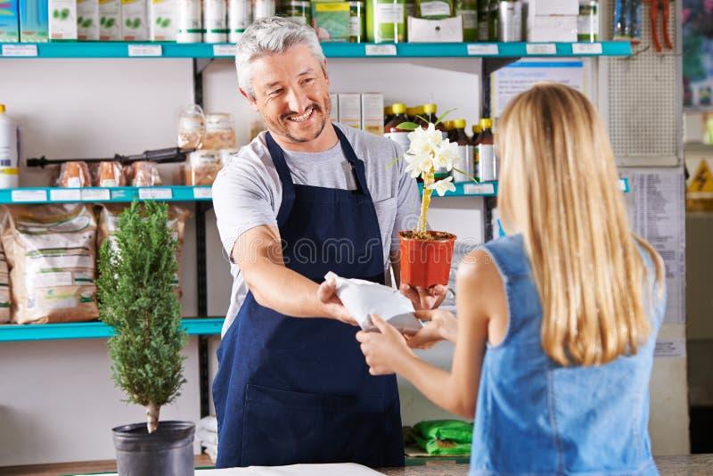 Homem como um florista no florista fotografia de stock royalty free