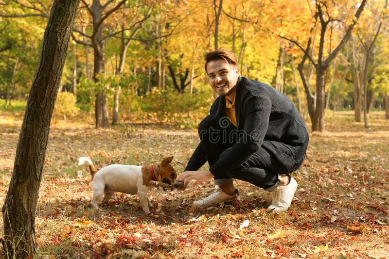 Homem considerável novo com seu animal de estimação no parque foto de stock
