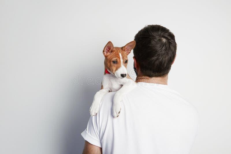 Homem considerável que aconchega-se e que abraça seu cão de cachorrinho do basenji, amizade próxima contra um fundo branco imagens de stock royalty free