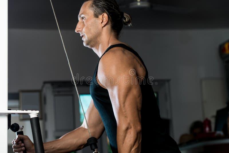 Homem considerável que faz o exercício de Ttriceps com a polia no Gym imagens de stock royalty free