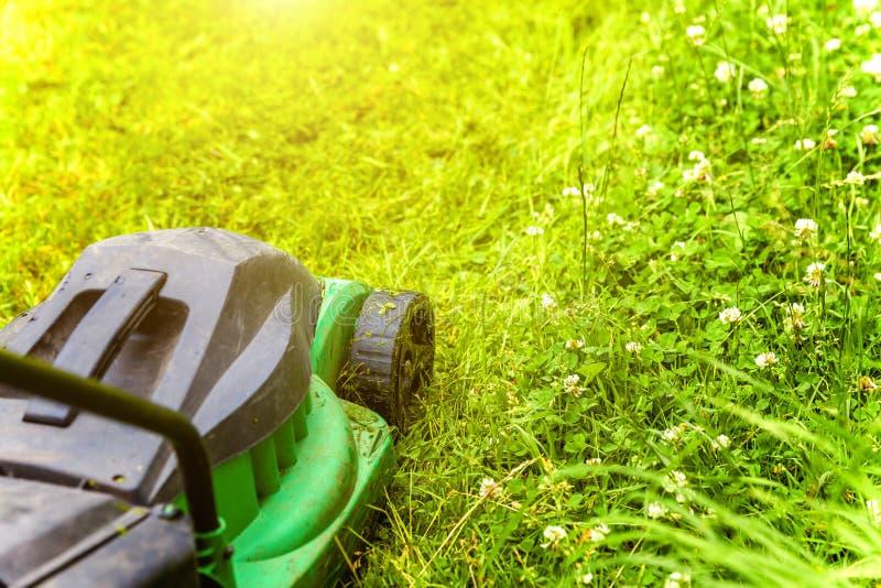 Homem cortando grama verde com cortador de grama no quintal Estilo de vida do campo de jardinagem Linda vista sobre a grama verde fotografia de stock royalty free