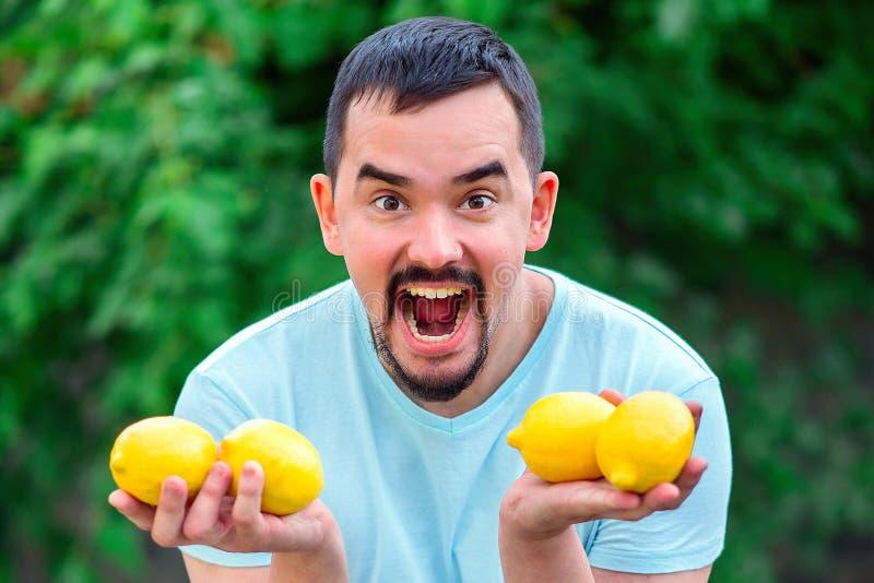 Homem da gritaria que realiza nas mãos quatro limões amarelos Homem com a boca aberta larga que está exterior com citrinas imagem de stock