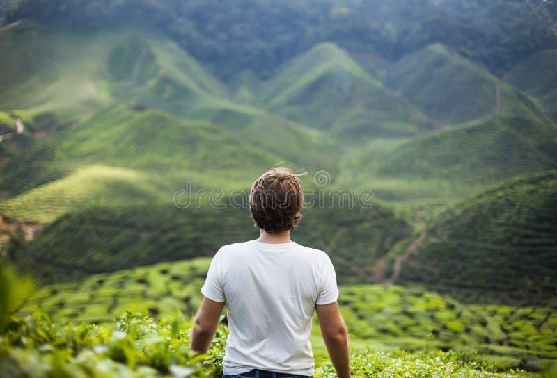 Homem da liberdade nas montanhas fotos de stock royalty free