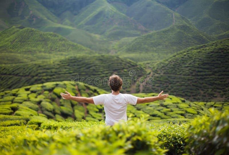 Homem da liberdade nas montanhas fotografia de stock royalty free