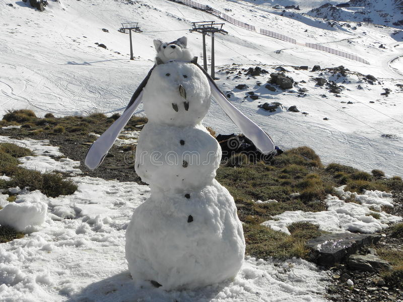 Homem da neve imagem de stock royalty free