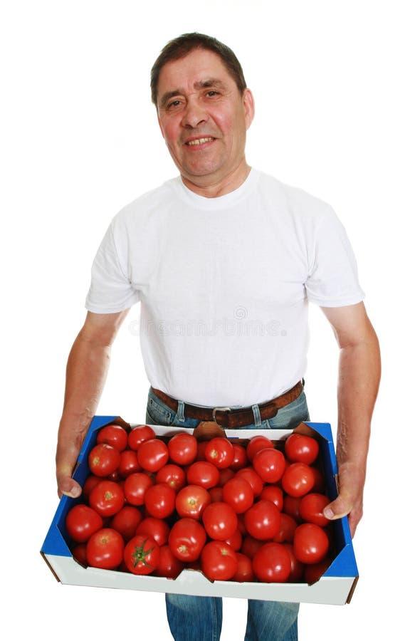 Homem de entrega com tomates fotografia de stock