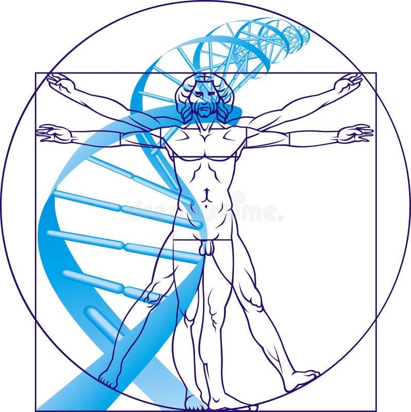 Homem de Leonardo da Vinci e ADN ilustração royalty free