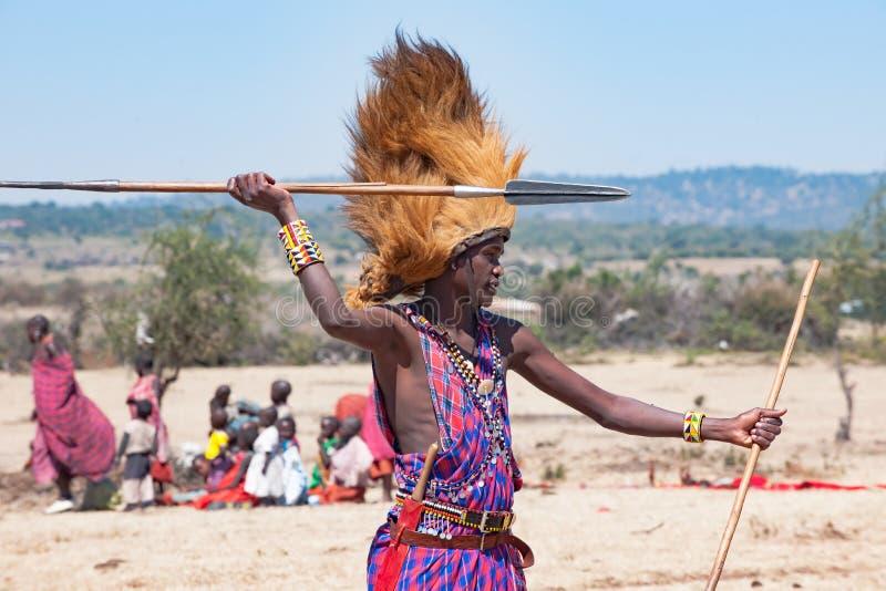 Homem de Maasai, guerreiro, vestidura típica e juba masculina do leão na cabeça, lança à disposição, Tanzânia foto de stock royalty free