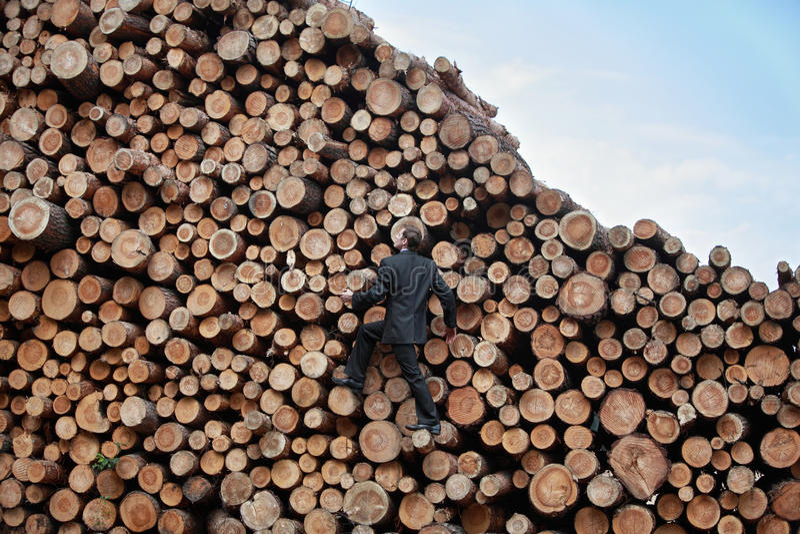 Homem de negócio novo em sua maneira à parte superior foto de stock royalty free