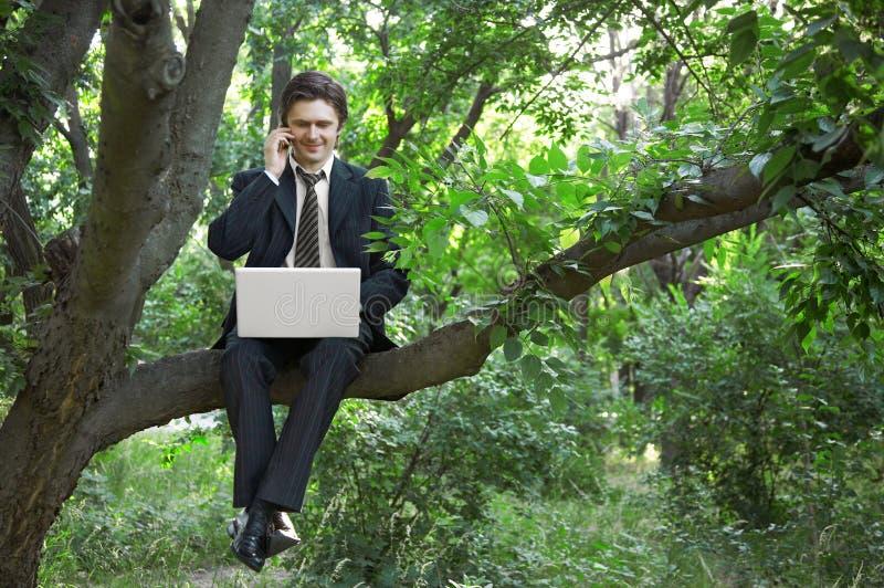 Homem de negócio que usa o portátil imagens de stock royalty free