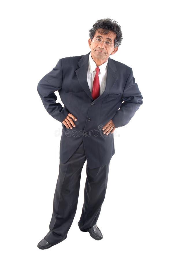Homem de negócios fotos de stock royalty free