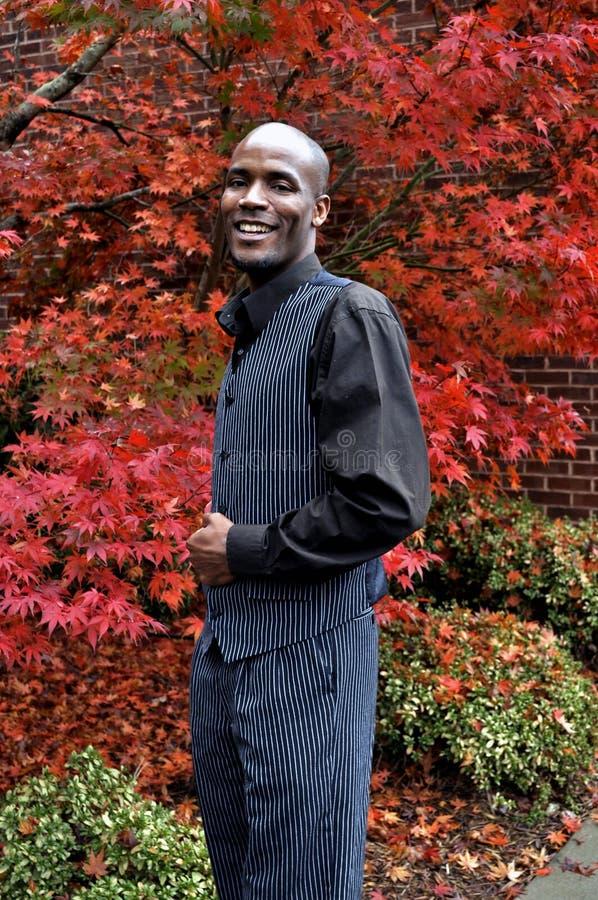 Homem de negócios de sorriso do americano africano fotos de stock royalty free