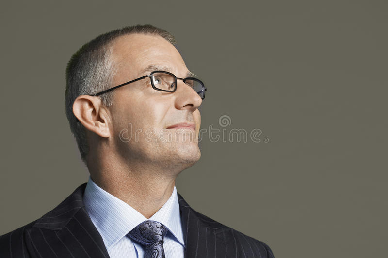 Homem de negócios envelhecido meio In Glasses Smiling foto de stock royalty free
