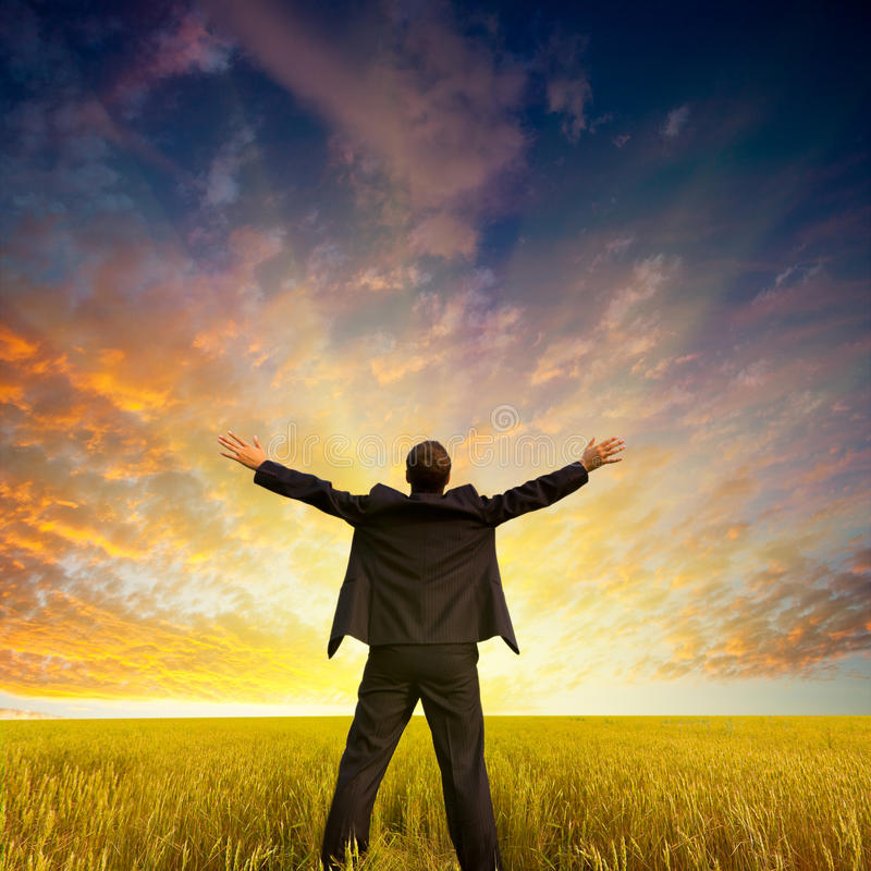 Download Homem de negócios no campo foto de stock. Imagem de negócio - 26506170
