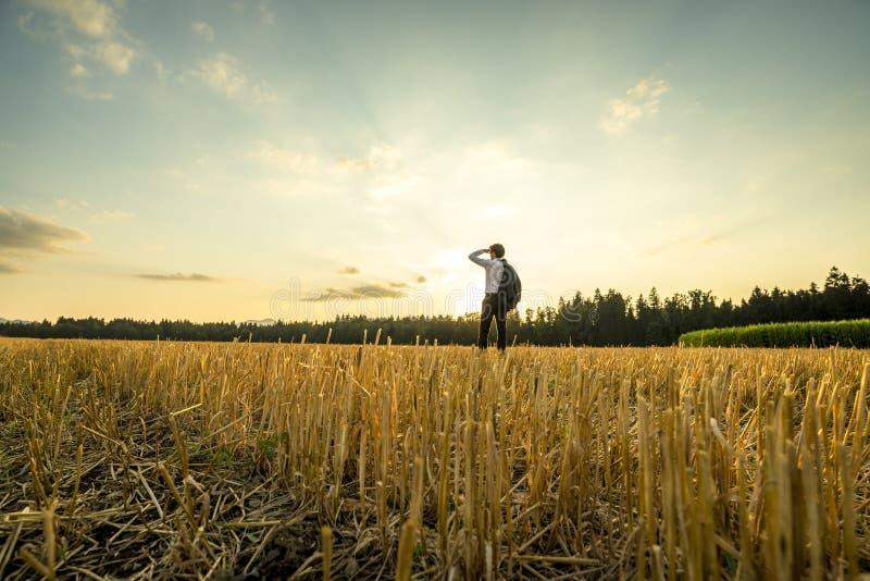 Homem de negócios no campo que olha na distância imagens de stock royalty free