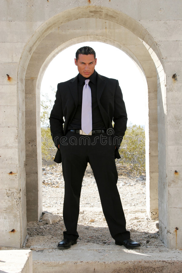 Homem de negócios no terno fotos de stock royalty free