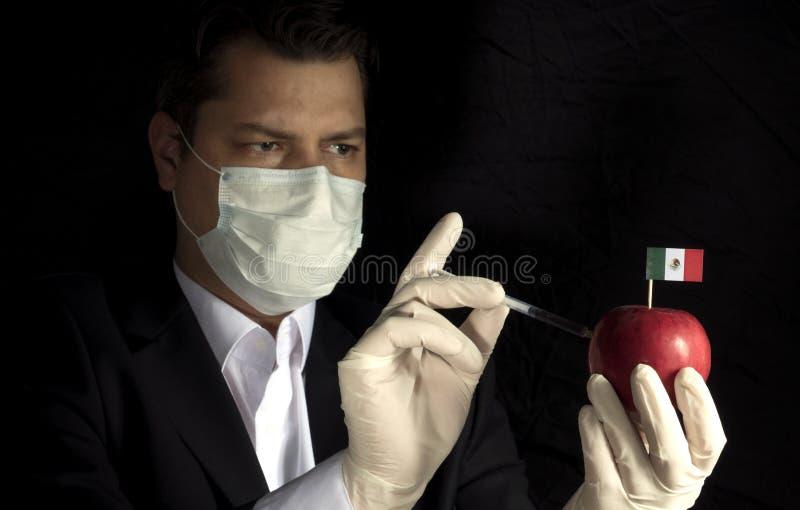 Homem de negócios novo que injeta produtos químicos em uma maçã com a bandeira mexicana no fundo preto fotografia de stock