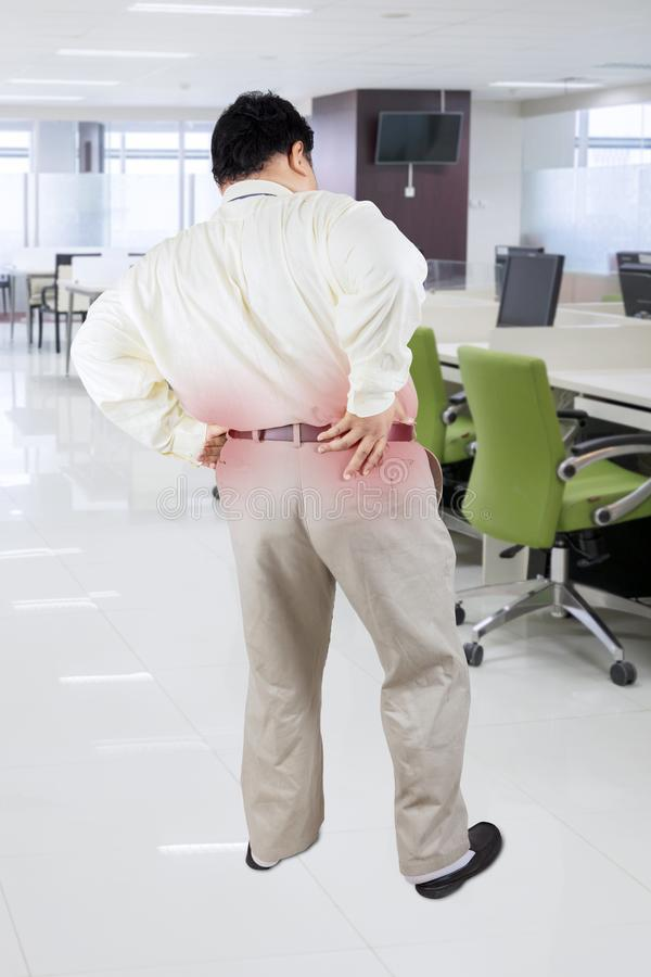 Homem de negócios obeso que tem a dor lombar no escritório imagem de stock