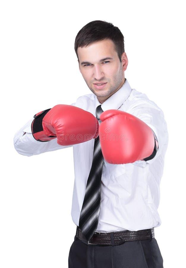 Homem de negócios pronto para lutar com as luvas de encaixotamento sobre o branco foto de stock royalty free