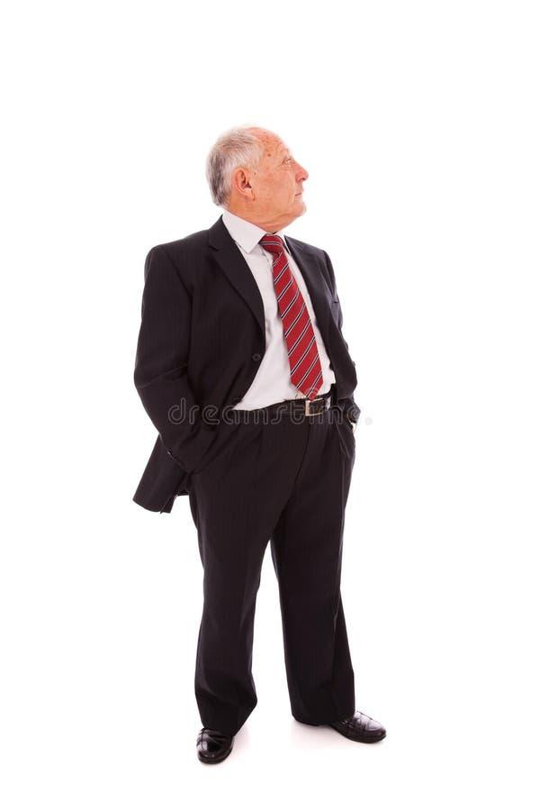 Homem de negócios sênior cheio fotografia de stock royalty free