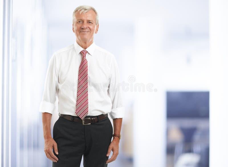 Homem de negócios superior executivo imagens de stock